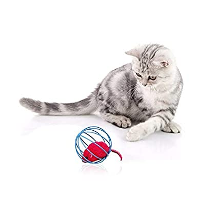 Amazon.com : Best Quality Funny pet Kitten cat Playing Mouse Rat mice Ball cage Toys Home Gatos jouet Chat juguetes para Gatos katten speelgoed 6121wn : Pet ...