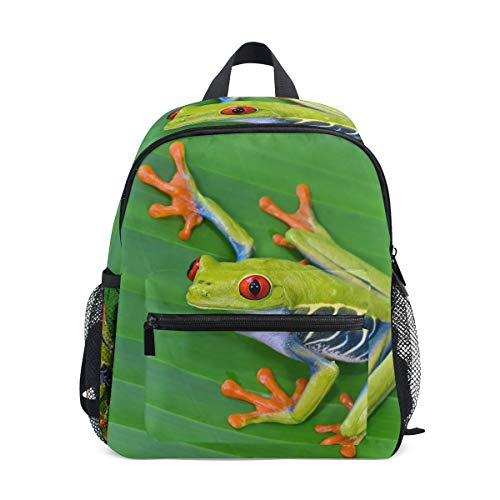 TropicalLife Amazon Rainforests Green Tree Frog Kid Preschool Toddler Backpacks Kindergarten Girls Boys School Bag