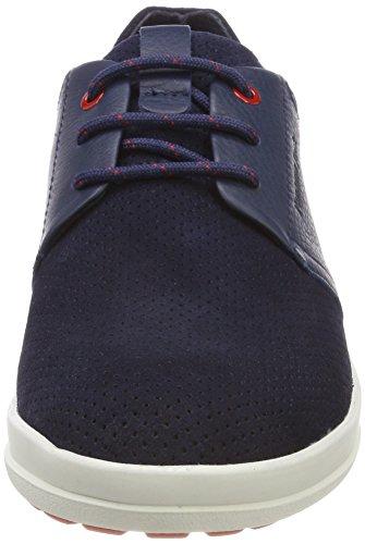 Oxford Azul Cordones Hombre para Titan Panama Marino Jack Zapatos de HyXqA