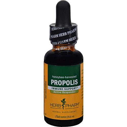 Propolis Liquid Herbal Extract (Herb Pharm Propolis Liquid Herbal Extract - 1 fl oz)
