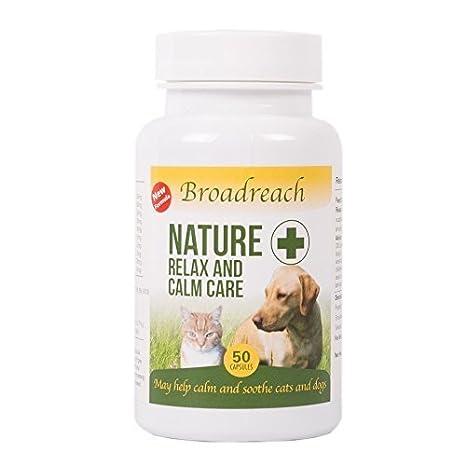 Relajarse y Calm Cuidado para perros y gatos Veterinario Fórmula Todos Los Ingredientes Naturales Diseñado para ansiedad y de estrés relacionados problemas ...