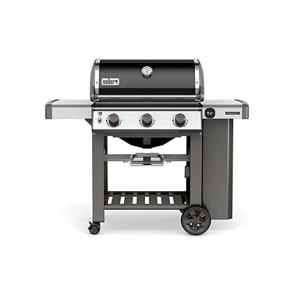 Weber-Genesis-II-E-310-Natural-Gas-Grill