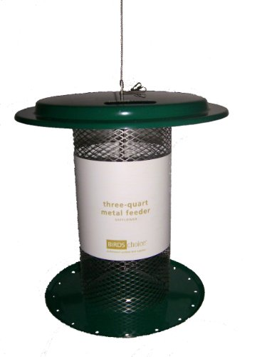 Birds Choice 3 qt. Magnet Mesh Safflower Feeder-Green ()