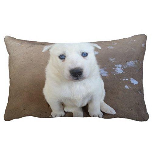 Almohada cojín tienda azul ojos de su perro creativo ...