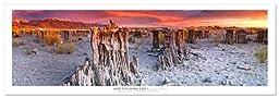 Award Winning Landscape Panoramic Art Print Poster: Sand Tufa Mono Lake