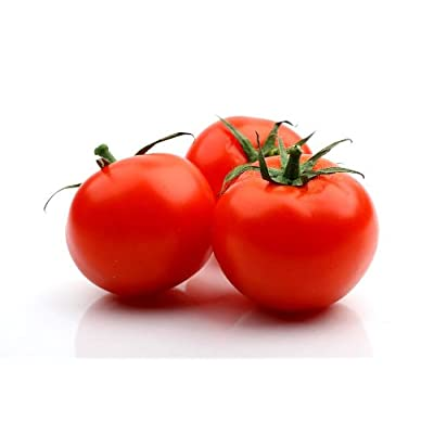 Celebrity Hybrid Tomato Seeds 30 Seed Pack by OrganicSeedSupply : Vegetable Plants : Garden & Outdoor