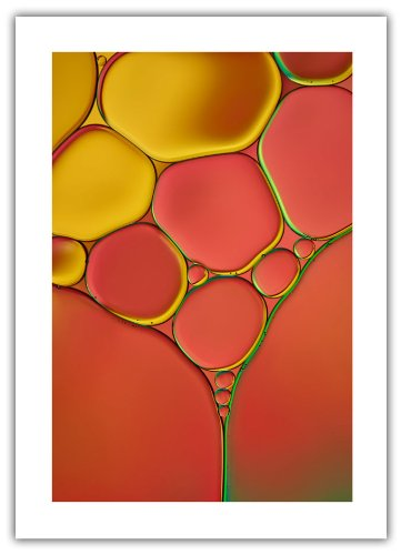 ArtWall Cora Niele 'Stained Glass I' Unwrapped Flat Canvas Artwork, 16 by 22-Inch