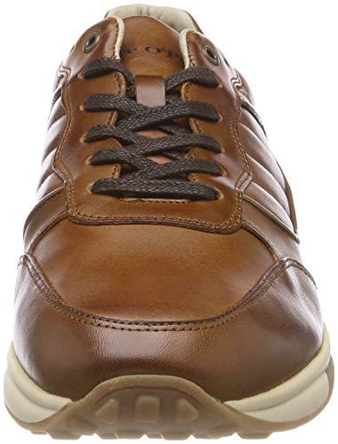 720 Shoe Braun Baskets Marc O'polo Lace Homme cognac ZqWTaZ06wn