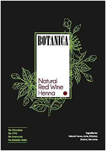 Botanica - Juego de 3 cepillos de tinte para el pelo con ...