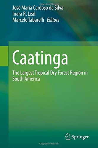 Caatinga: The Largest Tropical Dry Forest Region in South - Dress Da Store Zone