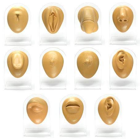 Complete 11 Piece Silicone Display Set - Tan Body Bits