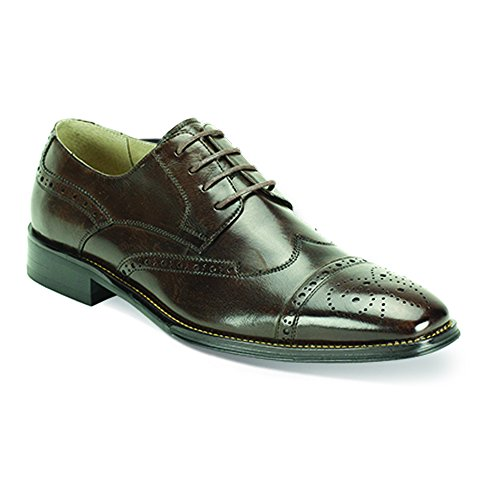 Wingtip Laceup Giovanni Oxford Chocolate Chocolate Leather 6502 Brown Dress Shoe Brown Mens XIwIUO
