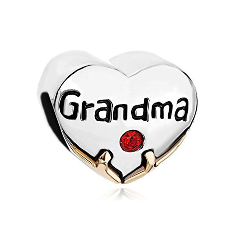 ReisJewelry Love Grandma Nana You Are Special Charms Family Charm Beads For Bracelets (Heart Grandma) (Charm Grandma Heart Special)