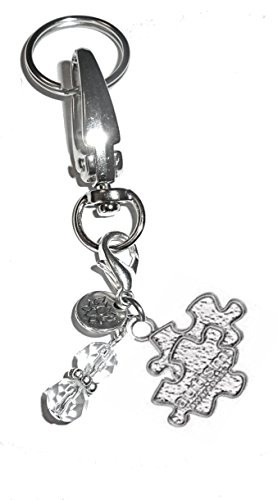 Hidden Hollow Beads Charm Key Chain Ring, Women's Purse or Necklace Charm, Comes in a Gift Box! (Autism)