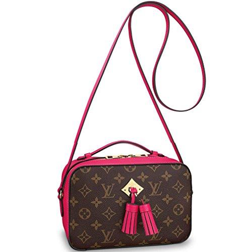 Louis Vuitton Small Handbags - 5