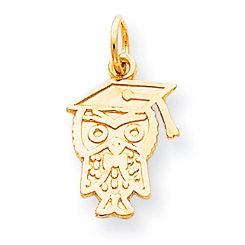 10K Yellow Gold Graduation Owl Charm Pendant ()