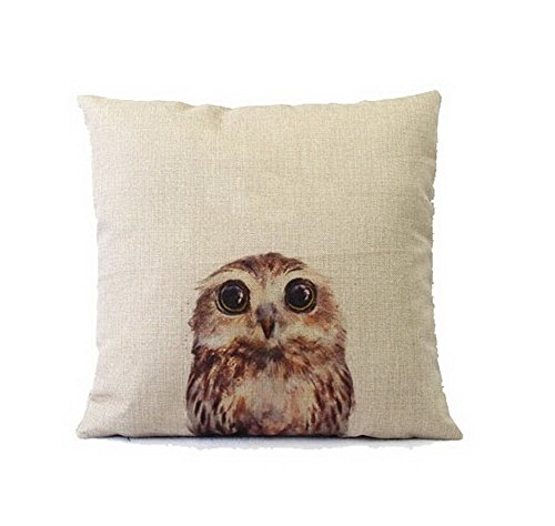 Little Cotton Decorative Pillow covers product image