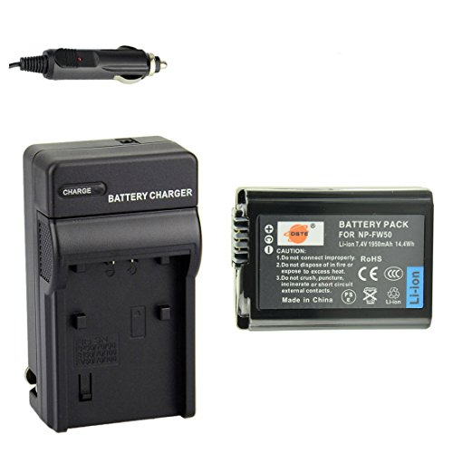 DSTE NP FW50 Battery Charger DSC RX10