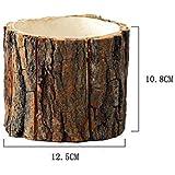 Desktop Forest piccoli vasi con corteccia in legno naturale stile vaso di fiori casa ufficio giardino decorativo organizer portaoggetti