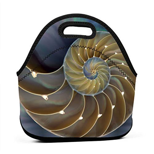Amazing Chambered Nautilus Painting Insulated Neoprene Lunch Bag Tote Handbag lunchbox Food Container Gourmet Tote Cooler warm Pouch For School work Office