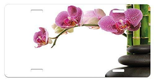 Fabri.YWL Meditation License Plate, Spa Stones with Orchid and Bamboo Stems Yoga Chakra Zen SpirituaImage, High Gloss Aluminum Novelty Plate, 6 X 12 Inches, Fuchsia Green Grey