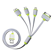 Timorn USB Cable, 4 in 1 Multifunctional Universal USB charger for iPhone 6, 6 Plus iPad, Samsung Galaxy S5 Android,MP3, MP4 Power Bank and More (Green)