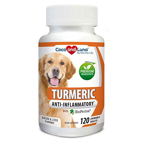 Turmeric for Dogs Anti