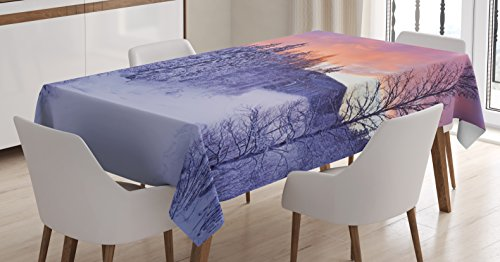 Arctic Sun Tabletop (Winter Tablecloth by Ambesonne, Frozen River in a Wintry Landscape Finnish Lapland at Sunrise Arctic Nordic Countries, Dining Room Kitchen Rectangular Table Cover, 52 W X 70 L Inches,)