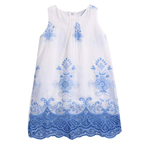 2019 Baby Girls Cute Princess Summer Lace Dress Sleeveless Embroidery Fresh Style Dresses (Blue, 9T)