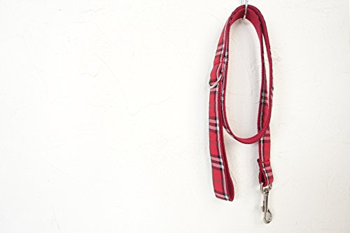 hipidog Personalized Dog Collar Leash- Matching Collar Available Separately (Scottish Red)