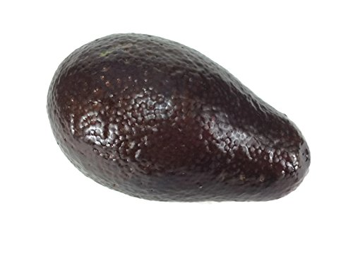 Avocado Brown Fake Fruit Artificial Faux Vegetables Decor Children Teaching Props -