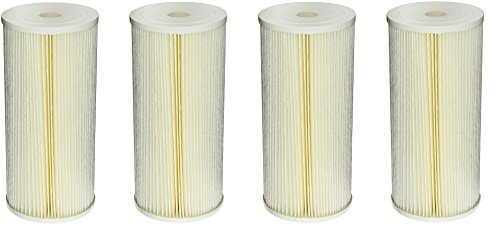 (Pentek ECP5-BB Pleated Cellulose Polyester Filter Cartridge, 9-3/4