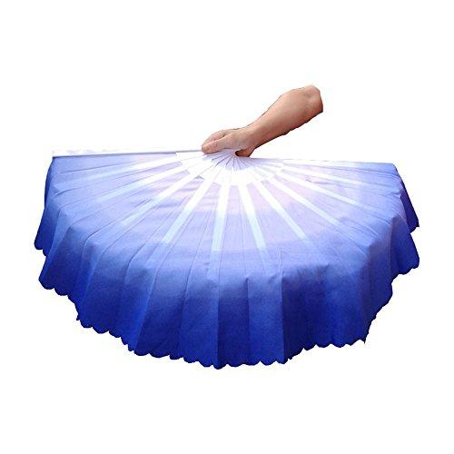 ZooBoo 1pair Plastic Taichi Kungfu Fan Dancing Fans Martial Arts Sports Folding Hand Fan 13inch (Blue) by ZooBoo