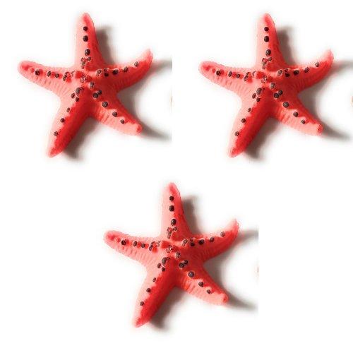 Path13 Magic Mega Megga Grow 600% Growth Aquatic Sea Beach Ocean Marine Creatures Animals Toys Bundle Value Pack (3 Pack - Starfish)