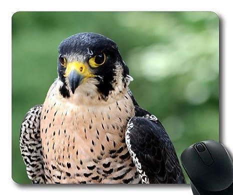 Yanteng Cómoda Alfombrilla de ratón, Ojos de búho del Tatuaje Wanderfalke Falco peregrinus Peregrine Falcon, Alfombrilla de ratón con Bordes cosidos: ...