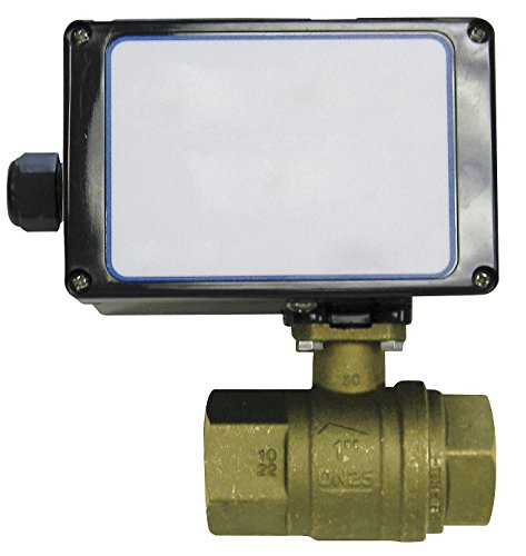 Watercop Brass Ball Valve - Brass Electronic Actuated Ball Valve 1