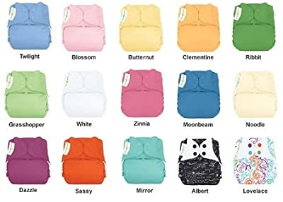 Bumgenius Elemental Organic 6 Pack Mixed Colors Cloth Diapers One Size Fits All by Bumgenius that we recomend individually.