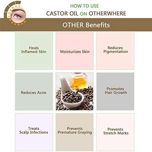 Aceite de ricino - Aceite pureza 100% prensado en frío - Estimula el crecimiento del cabello, las pestañas y las cejas, refuerza las uñas, gran remedio para ...