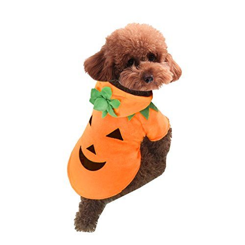 [Pet Puppy Dog Halloween Costumes Cute Pumpkin Fancy Party Hoodie Jacket Winter Autumn Warm Velvet Hooded Clothes Dress Coat Outwear Jumpsuit Christmas Gift for Pet Dogs] (Cat Sushi Halloween Costume)