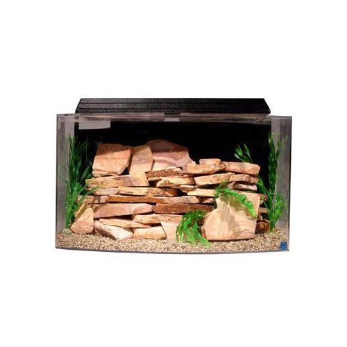 SeaClear 46 gal System II Bowfront Acrylic Aquarium, 36 by 161/4 by 20
