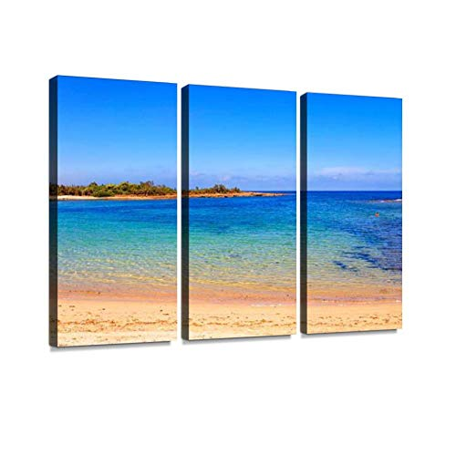 Summer.Mediterranean maquis: a Nature Reserve of Torre Guaceto.Salento (Apulia)-Italy- Print On Canvas Wall Artwork Modern Photography Home Decor Unique Pattern Stretched and Framed 3 Piece