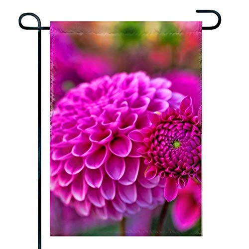 Love fled Dahlia Flower HD Wallpapers 1 Welcome Spring Animal Garden Flag Seasonal Flag Outdoor 12 by 18 inch