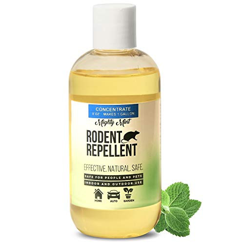(Mighty Mint 8 oz Peppermint Rodent Repellent Concentrate - Makes 1 Gallon - Natural Spray for Rats, Mice, and More - Non Toxic)