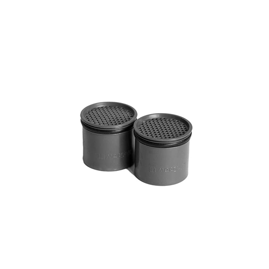 LifeStraw Carbon Capsule Replacement Filter for Go Bottle 2 Stage & Steel (2 Pack)
