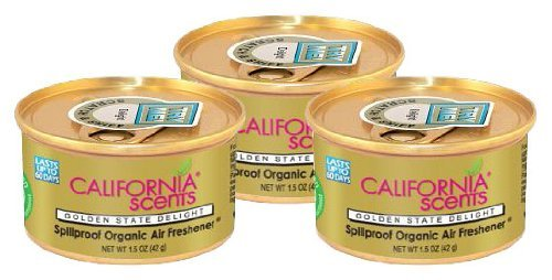 auto air freshener canisters - 8