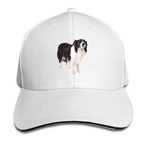 Border Collie Adjustable Sandwich Baseball Cap Cotton Snapback Peaked hat