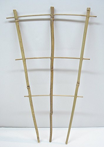 Natural Color Bamboo Trellis 18 inches Tall - Quantity 1 (Flower Trellis)