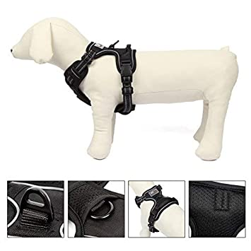 Meisax Arnés para Perros Pet No-Pull - arnés de Pecho Ajustable ...