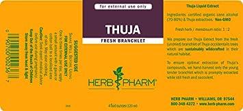 Herb Pharm Thuja Branchlet Liquid Extract – 4 Ounce