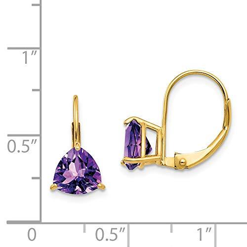 14k Yellow Gold 0.6IN Long 7mm Trillion Amethyst leverback Earrings